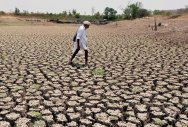 UP stares at drought as rains elude