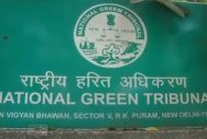NGT seeks action plan on waste disposal in quarry sites