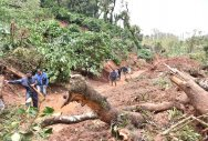 Scientists look to pinpoint cause for landslides
