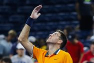 Third seed del Potro into US Open second round