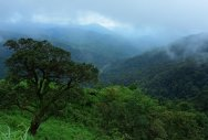Politics over Western Ghats