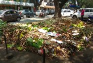 Markets, immersion sites strewn with post-fete waste