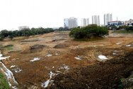 Better days ahead for two polluted lakes in KR Puram