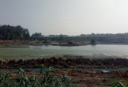 Panathur Lake to get a fresh lease of life soon