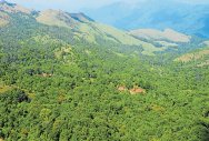 K'taka to reject Kasturirangan report on Western Ghats