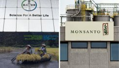Bayer to complete Monsanto buyout on June 7