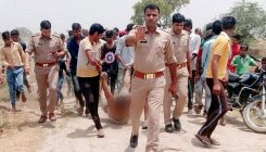 Hapur lynching: where was the cow, asks villagers