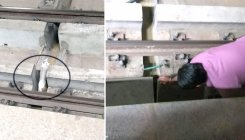 Cat trapped on metro tracks at Jalahalli station