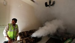 Zika virus cases in Rajasthan rise to 51