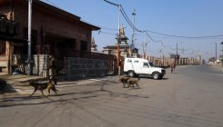 72nd year of Kashmir operation: Strike hits normal life