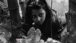 Ray's 'Pather Panchali' in BBC's 100 best foreign films