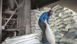 India contracts 8 lakh tonnes of sugar exports so far