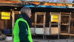 South Korea closes biggest dog slaughterhouse complex