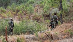 Pak troops target forward posts along LoC