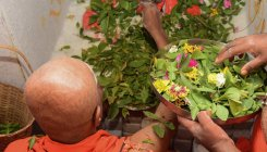 Lakhs catch last glimpse of Siddaganga seer