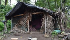 Damocles' sword hangs over adivasis, forest dwellers