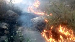 Forest fire scares people around Turahalli