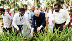 Focus on value addition to coconut: Kerala governor