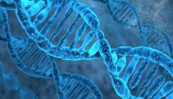 Poverty leaves a mark on genes: Study
