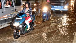 Rain uproots trees, floods low-lying areas