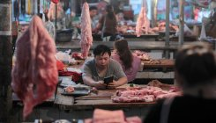 China's pig disease outbreak pushes up pork prices
