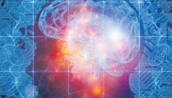 Internet may alter brain functions: Study
