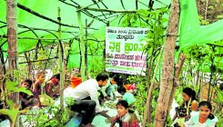 Mulluru govt school children set for 'green revolution'