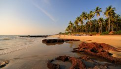 Call for facelift of Goa's tourism ecosystem