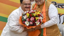 Nadda named BJP working prez, Shah remains at helm