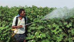 Pesticide exposure linked to teen depression: Study