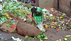 Food waste mounts in the face of rising hunger