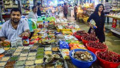June WPI inflation eases to near 2-yr low at 2.02 pc