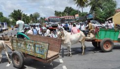 Cauvery water to Tamil Nadu; farmers take to streets