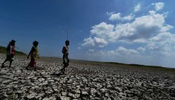 Over half of Odisha districts under drought threat