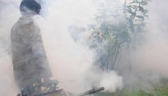 BBMP wakes up to spurt in dengue cases
