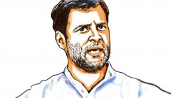 K'taka: Rahul blames vested interests within, outside