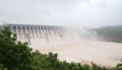MP: Narmada above danger mark in Dhar, Barwani district