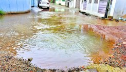 Sewage on Vas Lane a headache for residents