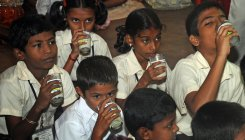 Kids at govt schools to get to enjoy nutritious milk