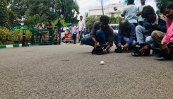 Fore! Golf ball lands inside BSY's home office