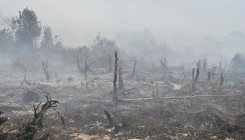 Malaysia, Indonesia shut schools over forest fires haze