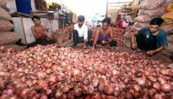 Onion prices surge; Centre mulls imposing stock limits