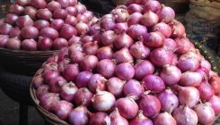Farmers protest as onion prices soar