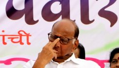 PM, Shah in Maharashtra as BJP senses defeat: Pawar