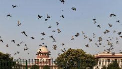SC sets aside Delhi HC order on Black Money law