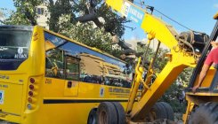 Onus on BBMP to check dangerous trees: Residents