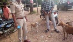 3 youths detained for animal cruelty during Deepavali