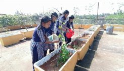 Students grow vegetables, enrich their knowledge & diet
