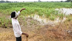 Aadhaar stands in way of farmers awaiting flood relief