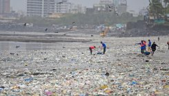 80 tonnes of solid waste disposed during beach cleaning